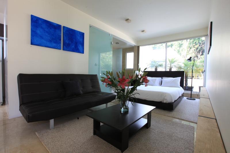 Bright studio apartment in the best of Condesa