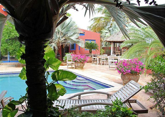 Relaxing atmosphere in a lush tropical setting at this adults on