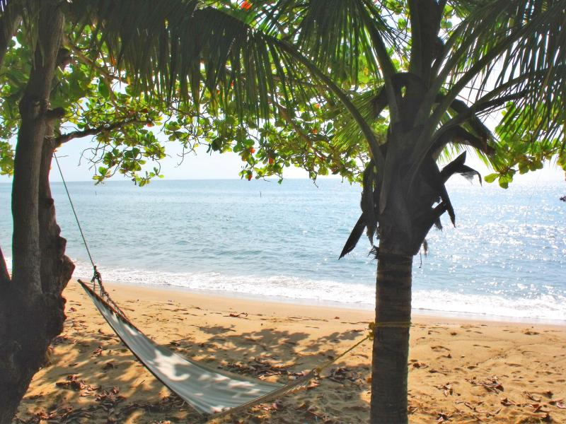 your beautiful condo beach