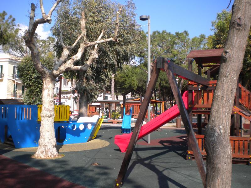 Children's playground in Vindicio's pinewood