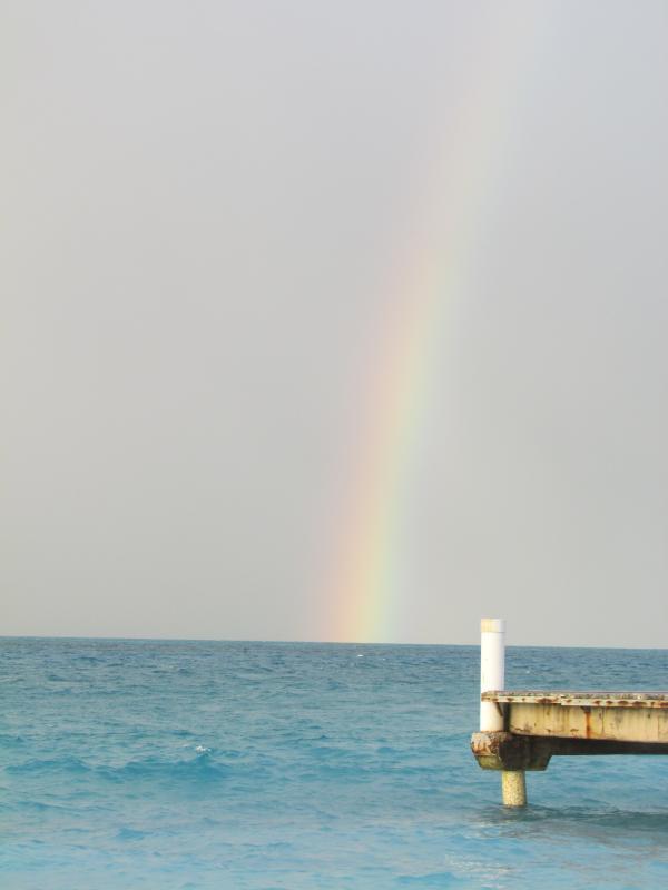 Recompensa de un arco iris después de una lluvia del Caribe por la tarde.