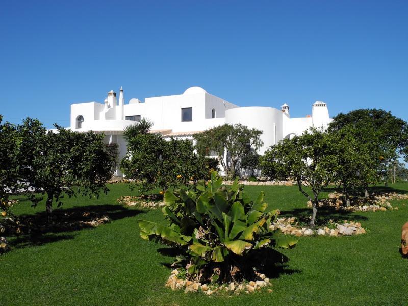 Obstgarten mit Sicht auf das Haus