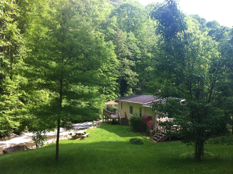Mountains, Privacy, Towering Trees, Bold Creek, Hiking out the front door