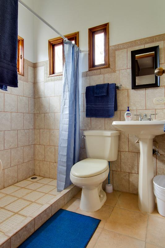 Main bathroom with a full sized shower.  Soft plush towels are supplied as well as beach/pool towels
