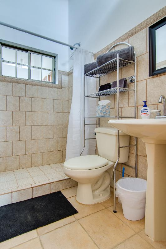 Ensuite bathroom with a full sized shower in the bedroom.  Hot water on demand throughout the home.