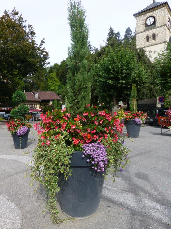 Village of flowers