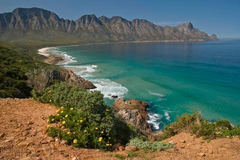 Clarence Drive to Hermanus and the whales during  calving season -  June to November