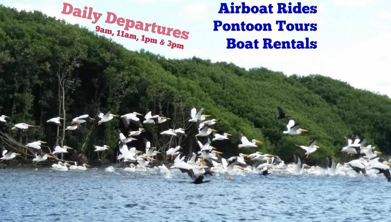 treehouse old homosassa river safaris waterfront updated 2018