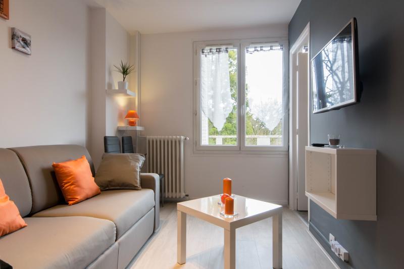 COSY APPARTEMENT T2 DIJON CENTRE/GARE, vacation rental in Chenove