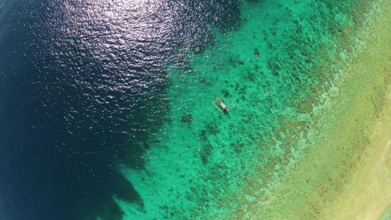 Explore the bay of Sumberkima with beautiful coral and fish, and Menjangan dive and snorkelparadise
