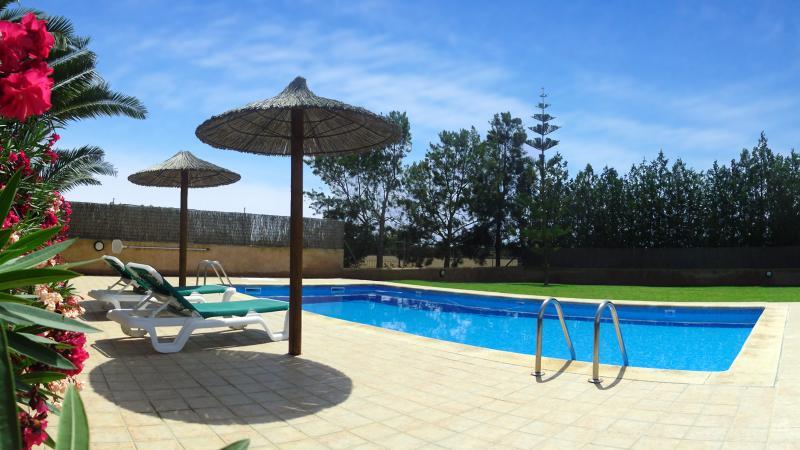 Son Llaneras Villa swimming pool.