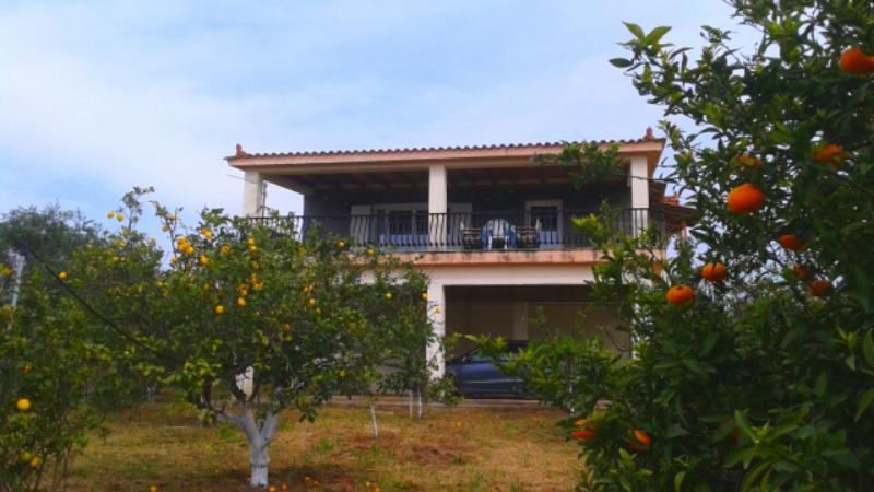 The villa among the lemon trees and the clementine trees!