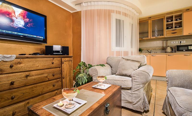 Salón para ver la tv SAT—Lounge to watch TV SAT