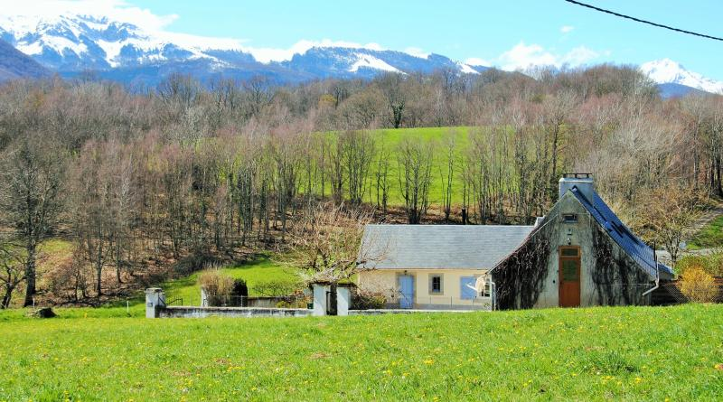 Chez Calvel - surrounded by fields and Pyrenees in the background