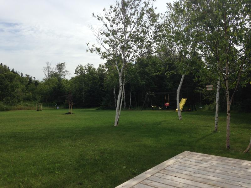 Large back yard with swing set and slide for kids.