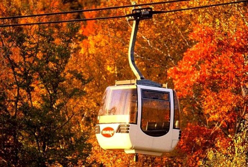 Gondola at Fall