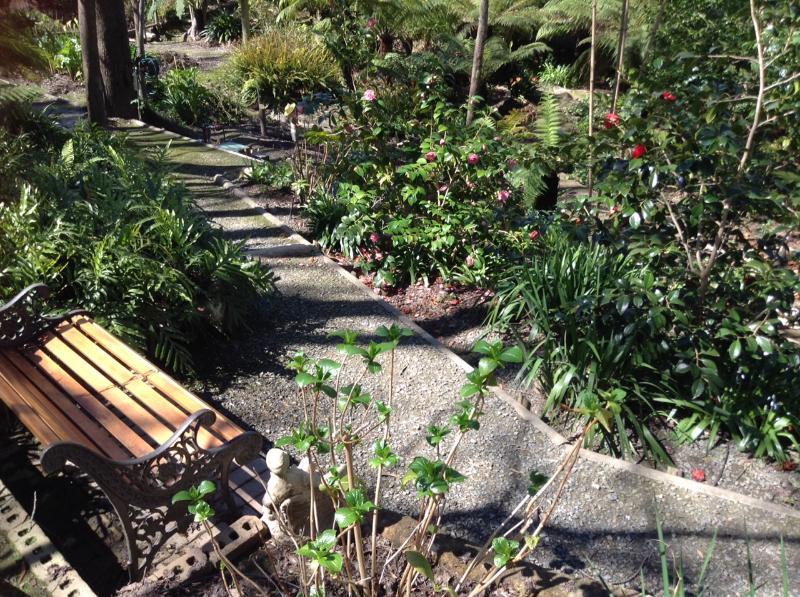 Enjoy a rest in the garden