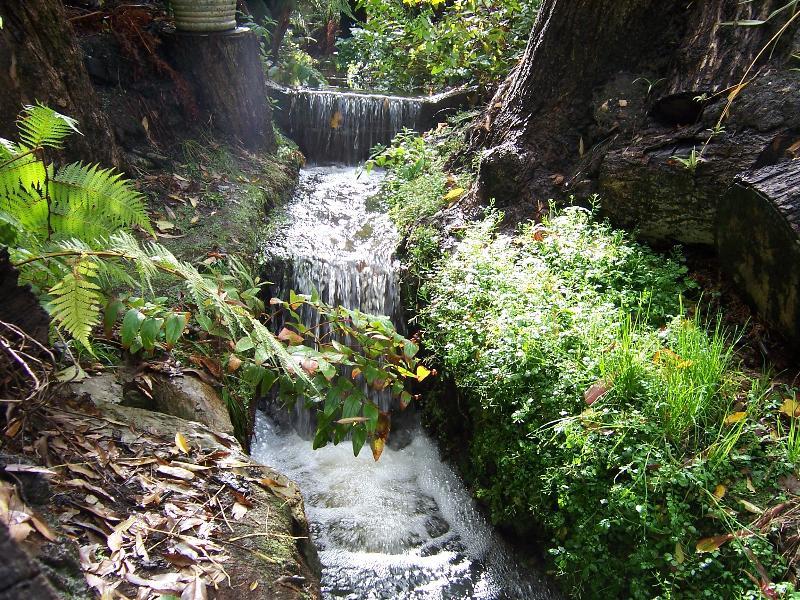 Creek running through the garden