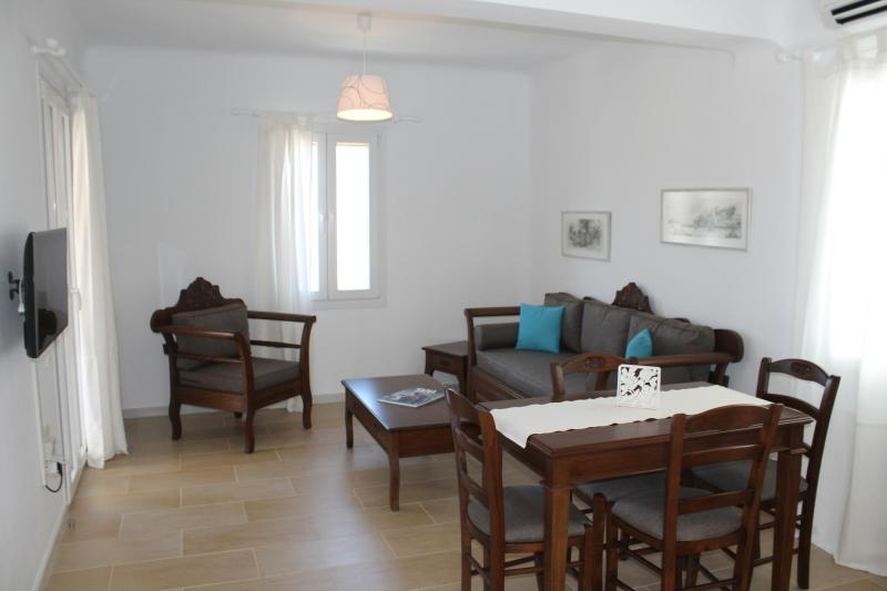 traditional apartments in Pyrgos, holiday rental in Kardiani