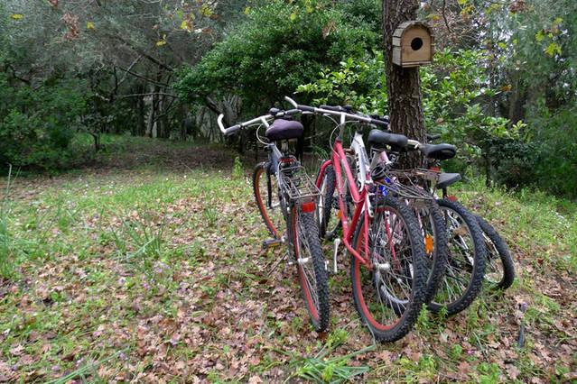 Bicycles available