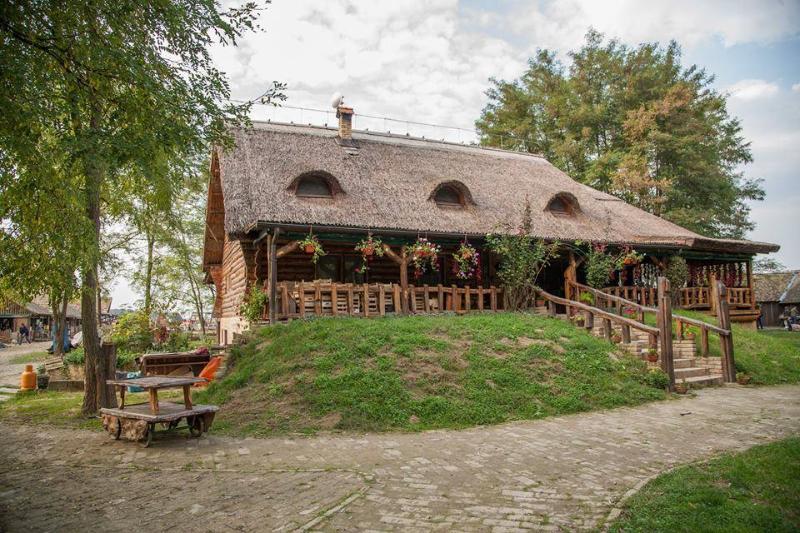 location appartement Bilje Eco-économie Orlov