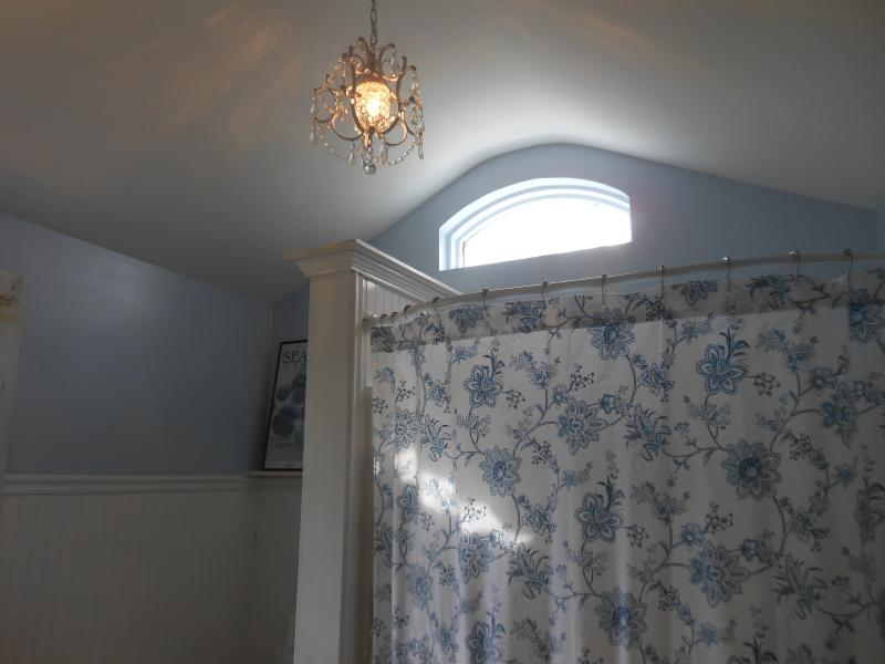 Vaulted ceiling and chandelier in Bathroom (just for fun!)