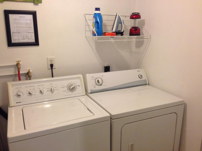 Laundry detergent and dryer softener sheets ncluded