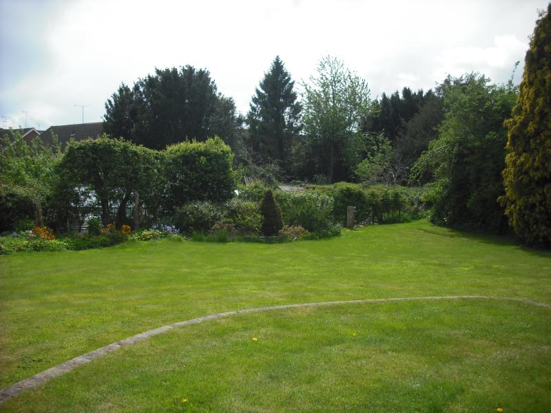 Rear garden from the patio