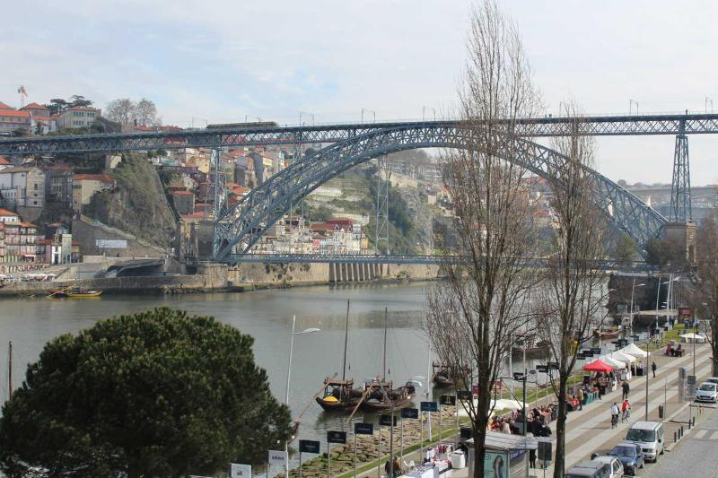 Stunning view over the Douro river D.Luis bridge