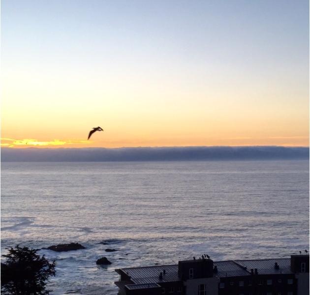 Splendida vista tramonto !!! Dalla Terrazza