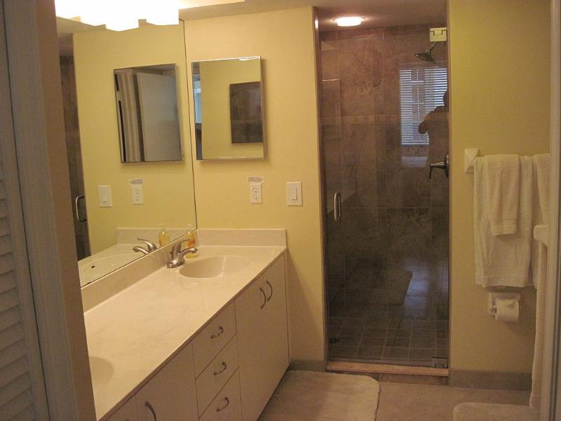 Baño principal completamente remodelado, puerta de la ducha de cristal