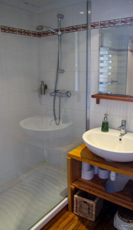 Room Elisette - en-suite shower room with toilettes