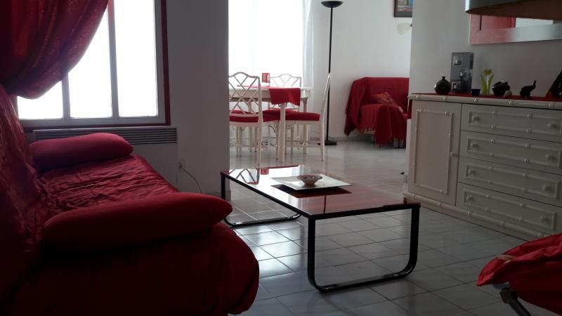 SELVA DE MAR, en édificio de 3 apartamentos, aluguéis de temporada em Palau-Saverdera