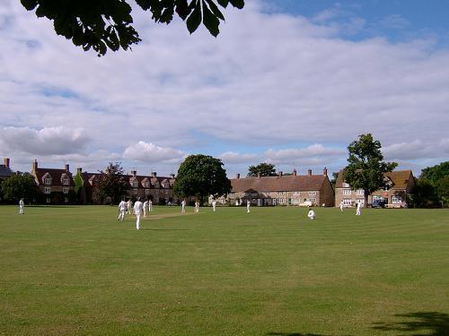 Regular cricket on the Village Green