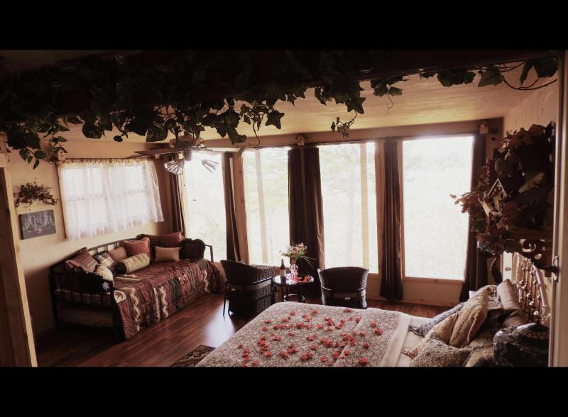 The Nest Bedroom is decorated with whimiscal little birds. Queen bed and trundle bed. Mountain views