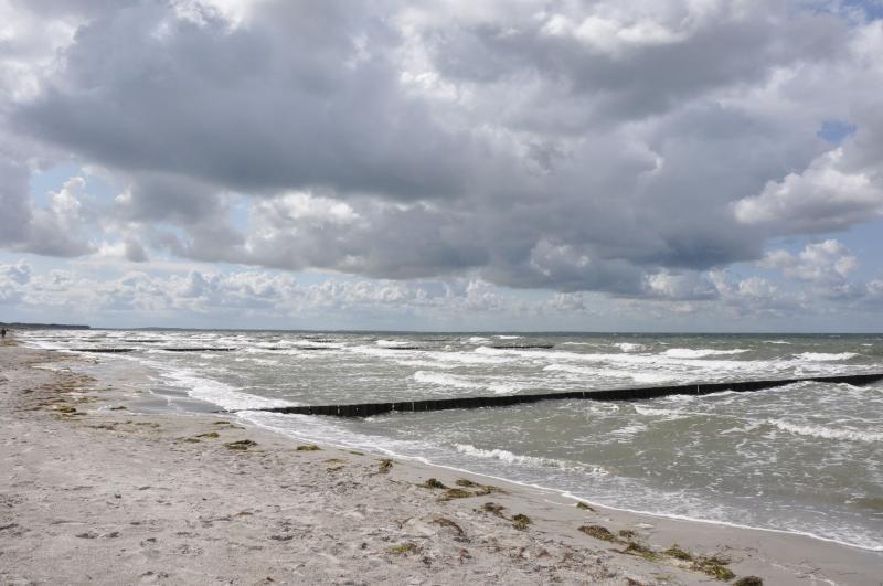 Die Ostsee ist in ca. 45 Minuten zu erreichen und bietet Erholung zu allen Jahreszeiten