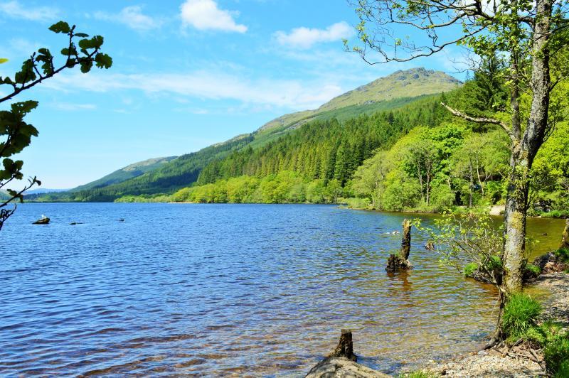 Scenic walks at Loch Eck, 10 mins drive away