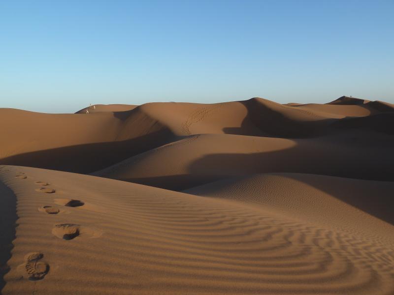 Les dunes près de Mhamid