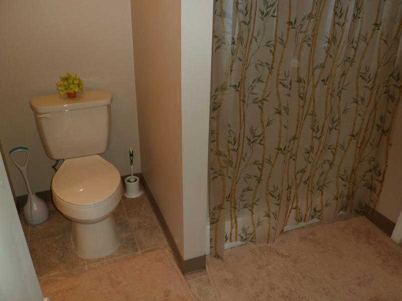 Basement bathroom has shower (no tub)
