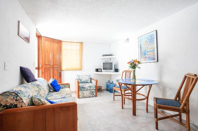 Living Room has Canadian Satellite TV