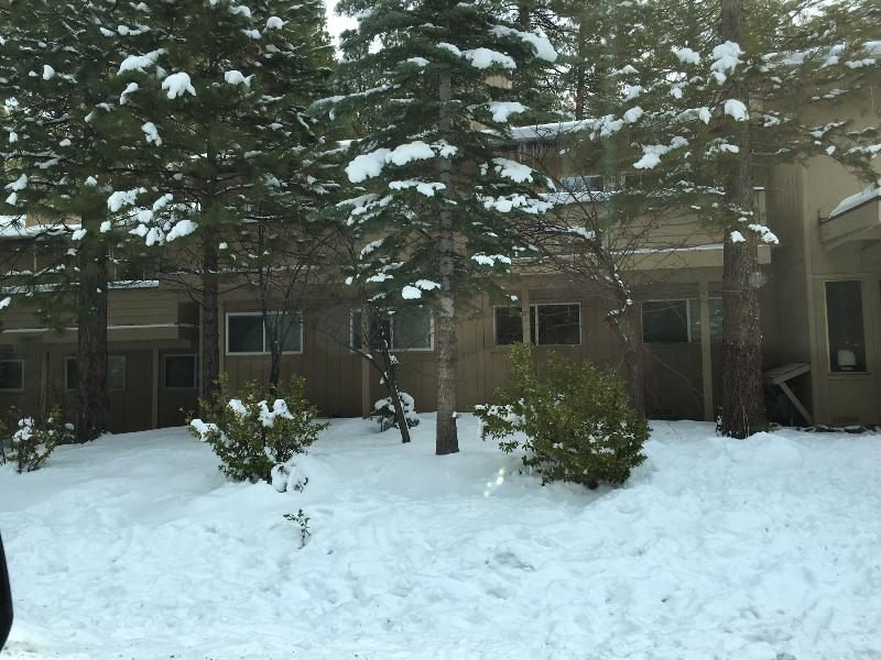 Winter time front of unit. Lots of snow. Make snowmen or small sledding hills