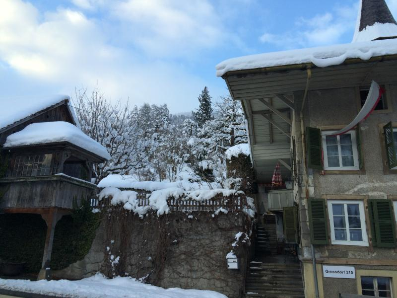 200 Year Old vYntage Swiss House, Interlaken, holiday rental in Canton of Bern