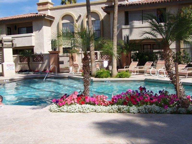 One of our 3 separate pooll areas