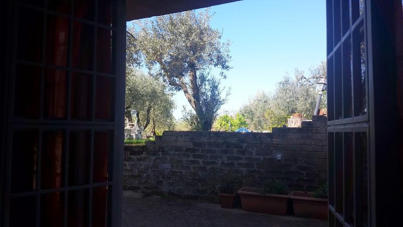 Vista giardino dall'entrata