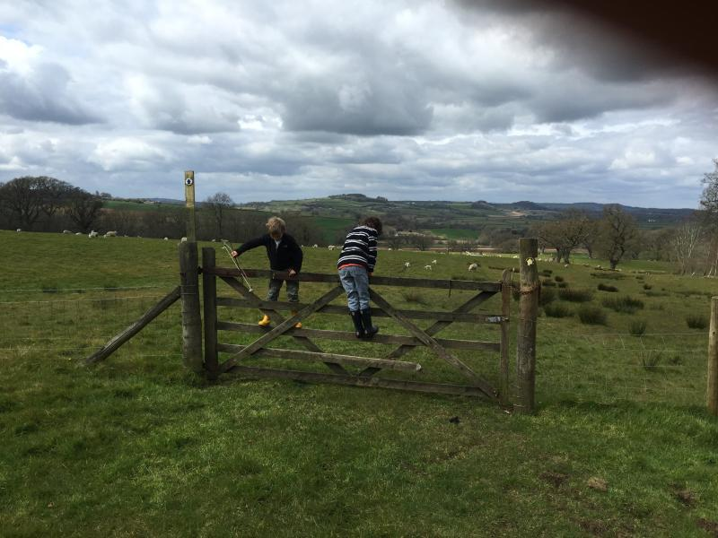 Local fields - the walk to the pub