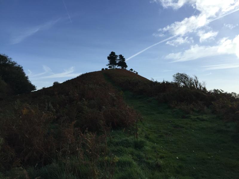 Colmers Hill - near Bridport