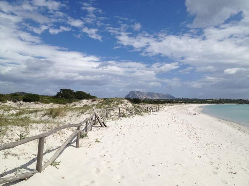 La Cinta Beach  10 mins walk away incredible soft sand great bathing/swimming approx 3 kilometres !
