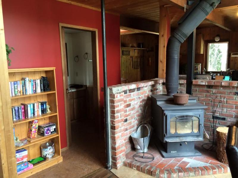 wood stove and small library