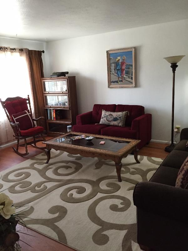 Living room with library and two couch beds.
