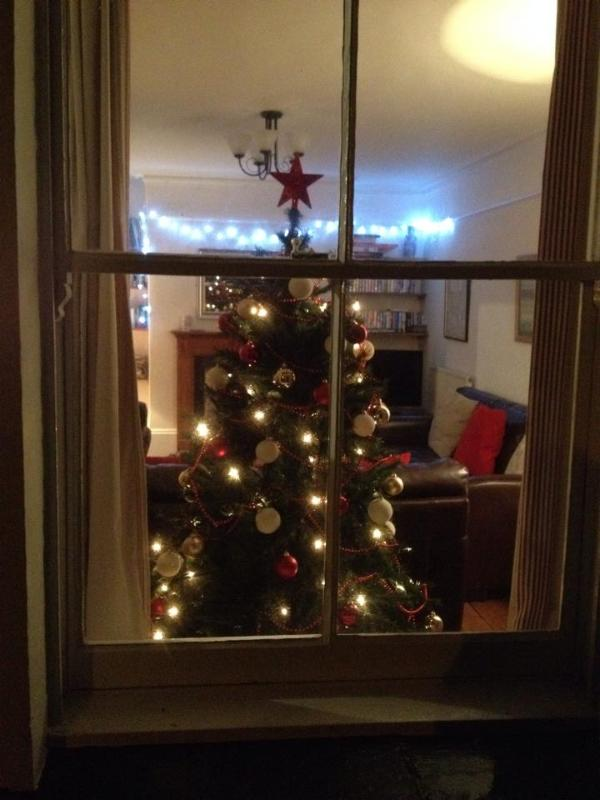 Twinkly lights and a cosy living room for your Christmas....